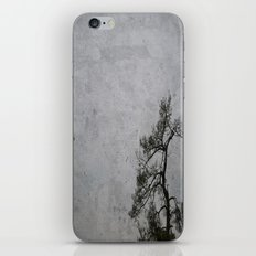 Love Me Or Leave Me iPhone & iPod Skin