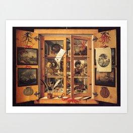 Cabinet of Curiosities Art Print