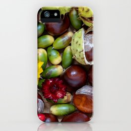 Autumn Things iPhone Case