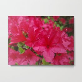 I'm Just a Flower Metal Print