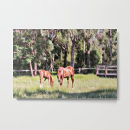 Horse and foal feeding in a field Metal Print