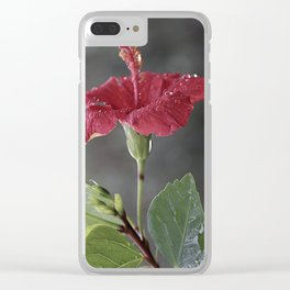 Hibiscus rosa-sinensis Clear iPhone Case