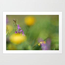 Purple, yellow and green bokeh Art Print