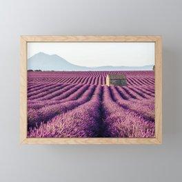 Lavender Fields, France Framed Mini Art Print