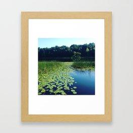 Ballad of the Bullfrog Framed Art Print