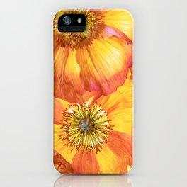 Icelandic Poppies iPhone Case