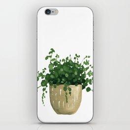 House Plant IV iPhone Skin