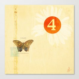 4 oclock butterfly  Canvas Print