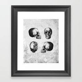 Vintage Medical Engravings of a Human Skull Framed Art Print