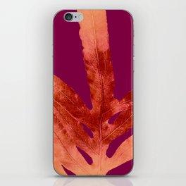 Red Wine Winter Nights, Romance iPhone Skin