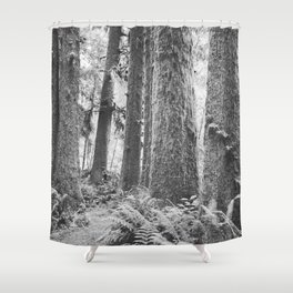 Forest Trail in Black and White Shower Curtain