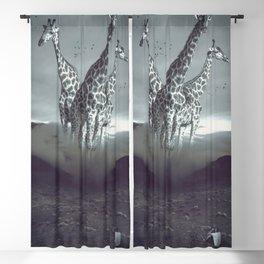 monachopsis Blackout Curtain