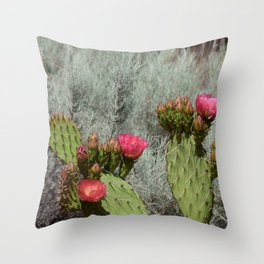 Cacti in Bloom - 3 Throw Pillow