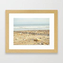 Shells in the Sand Framed Art Print
