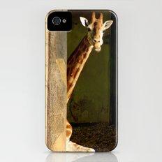 shy giraffe iPhone (4, 4s) Slim Case