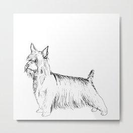Silky Terrier Ink Drawing Metal Print