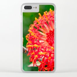 Beautiful Kleinia flower Clear iPhone Case
