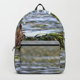 Otters Backpack