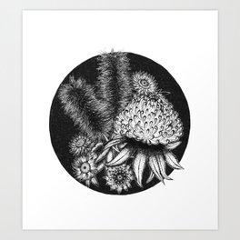 Australian Flora Art Print