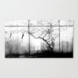 Birds and the Trees Canvas Print