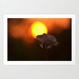 Bushfire Sunrise Art Print