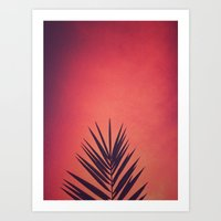 Sunrise Palm Art Print