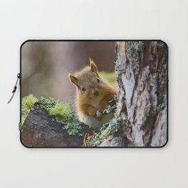 Baby Red Squirrel  Laptop Sleeve