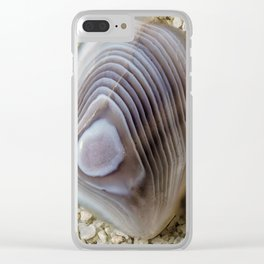 Clam shell Agate Clear iPhone Case