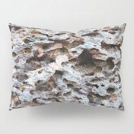 Tomb Raider Texture Pillow Sham