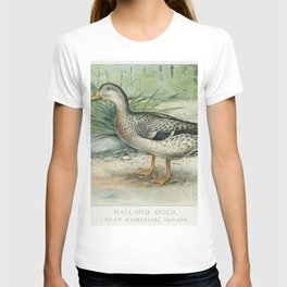 Mallard Duck (Anas Boschas) Female illustrated by JL Ridgway (1859-1947) and WB Gillette (1864-1937) T-shirt