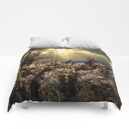 Cholla Cactus Garden bathed in Sunlight in Joshua Tree National Park California Comforters