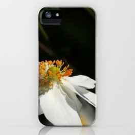 When Summer is Gone iPhone Case