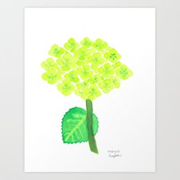 Green Hydrangea Art Print