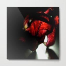 Nyx Series Frame F Metal Print