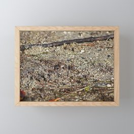 Fiddler at Ding Framed Mini Art Print