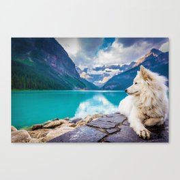 Wolf in Paradise (Color) Canvas Print
