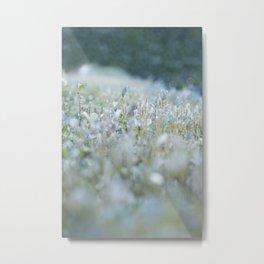 Tiny shoots Metal Print