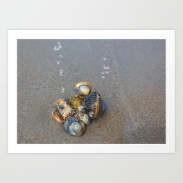 Sea pearls Art Print