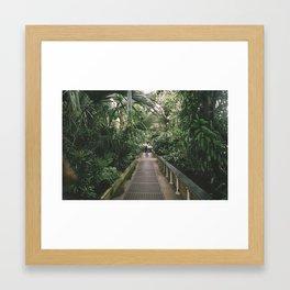 Getting Lost In Kew Framed Art Print