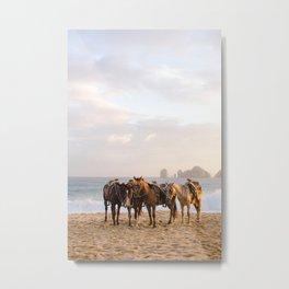 Horses on the beach Metal Print