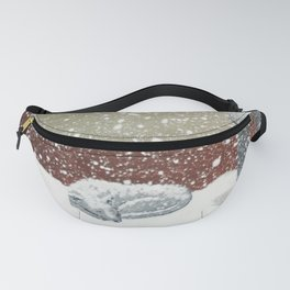Old musician Fanny Pack