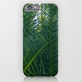 Luxurious Large Tangles Of Exotic Palm Leaves iPhone Case