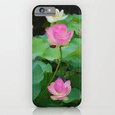 Lotus Blossom Flower 25 iPhone 6s Slim Case