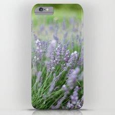 Lavendar Flower | Film Photography Slim Case iPhone 6 Plus
