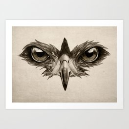 Hawk Eye Glare Art Print