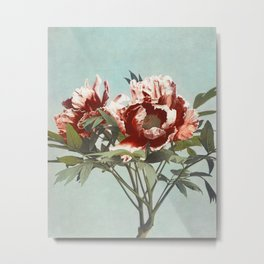 Kazumasa Ogawa - Tree Peony Metal Print