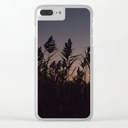 Phragmites silhouette at sunset Clear iPhone Case
