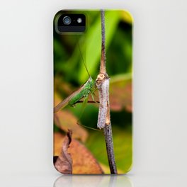 Conehead Cricket iPhone Case
