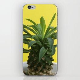 Euphorbia hypogaea(yellow) iPhone Skin