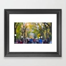 Central Park Fall Series 7 Framed Art Print